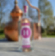 Hussingtree Spiced Plum Gin 700 bottle.J