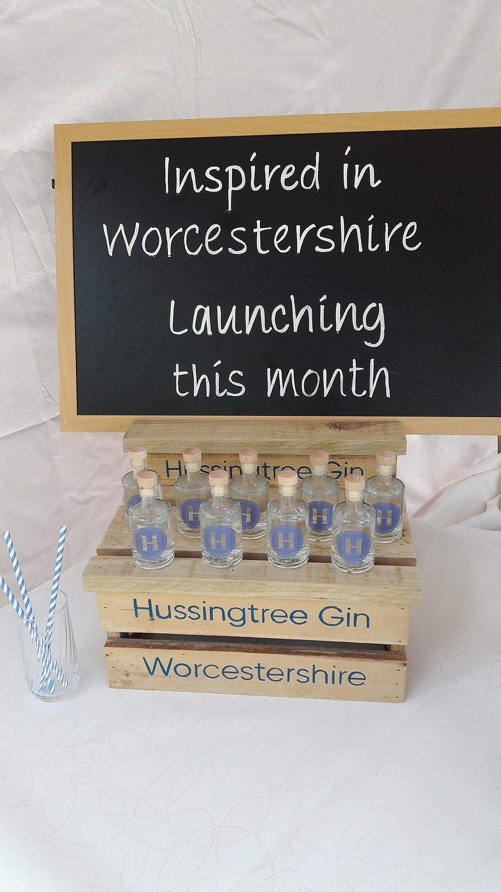 Hussingtree Juneberry Gin Worcestershire launch