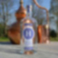 Hussingtree Juneberry Gin 700 bottle.JPG