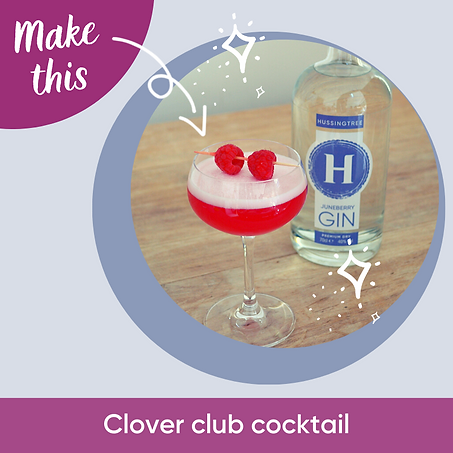 Hussingtree Gin Cocktail-Clover Club.png