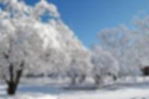 jya-風景1.jpg