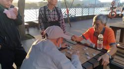 龍潭象棋會7