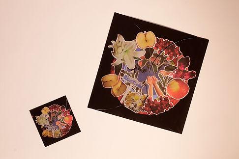 Album02_716.jpg