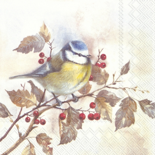 Sweet Little Bird - Decoupage Napkin