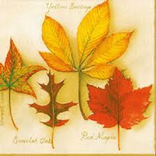 Maple Leaves - Decoupage Napkin