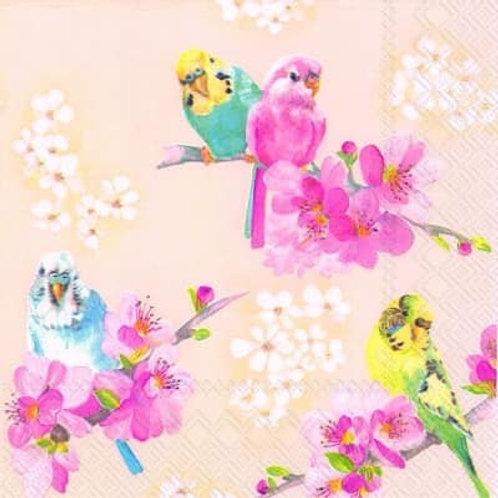 Parrots - Decoupage Napkin
