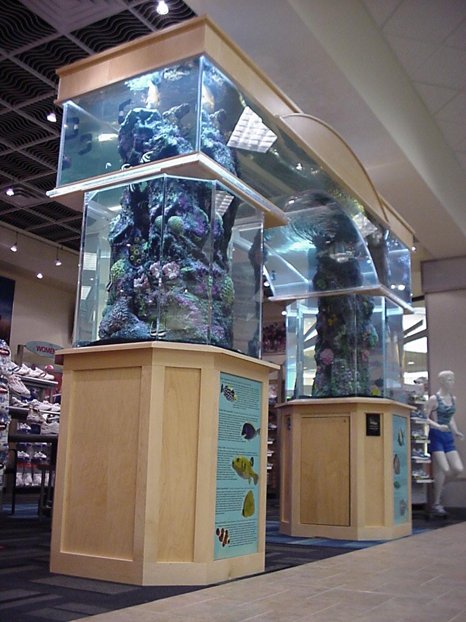 Arch Aquarium Exhibit