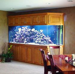 Gem Cut Angle Corner 10' Aquarium