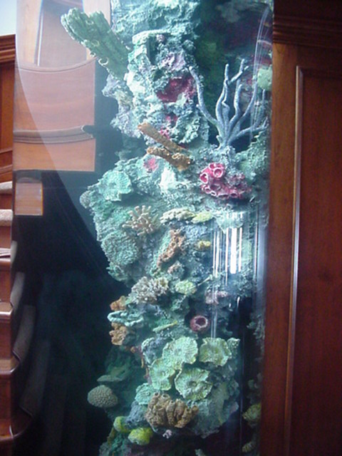 Reef Inserts