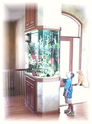 Entrance Room Divider Aquarium