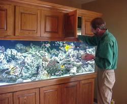 450 Gallon Reef Tank
