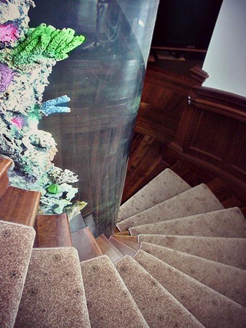Cylinder Aquarium Spiral Staircase