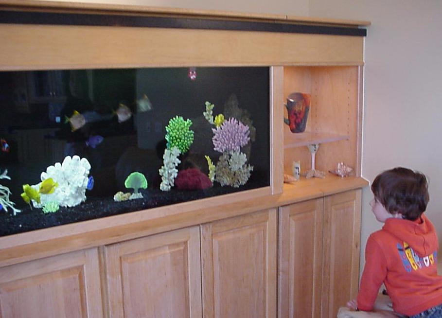 Built-in Display case Aquarium