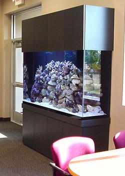 Laminate Cabinet Live Reef