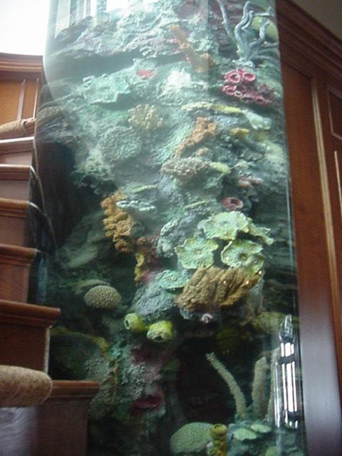 Spiral Staircase Cylinder Aquarium