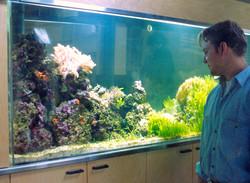 Living Reef Aquarium Peninsula