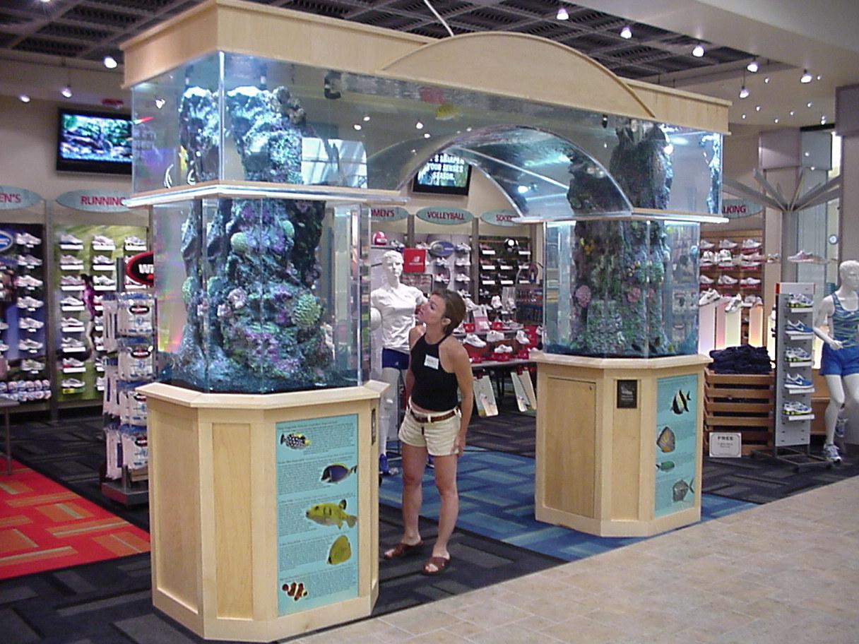 Scheels Arch Aquarium