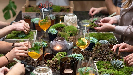 Host a terrarium party.jpg