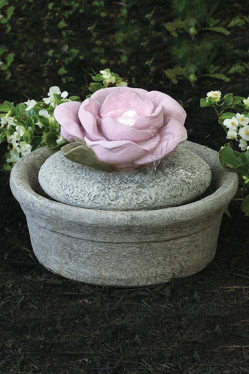 Parva – Rose Fountainette