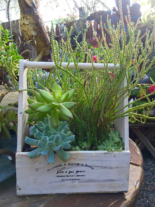 Succulent Planter 'White Box'