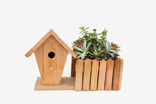 succulent arrangement planter box wood wooden birdhouse bird house easy care