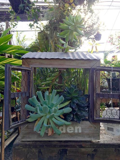 Succulent Planter 'Double Window Box'