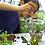 Thumbnail: Fairy Garden Class in Chester