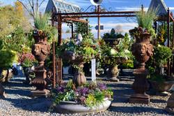 winter container garden display