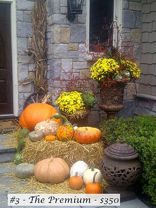Fall package 3 - 350.jpg