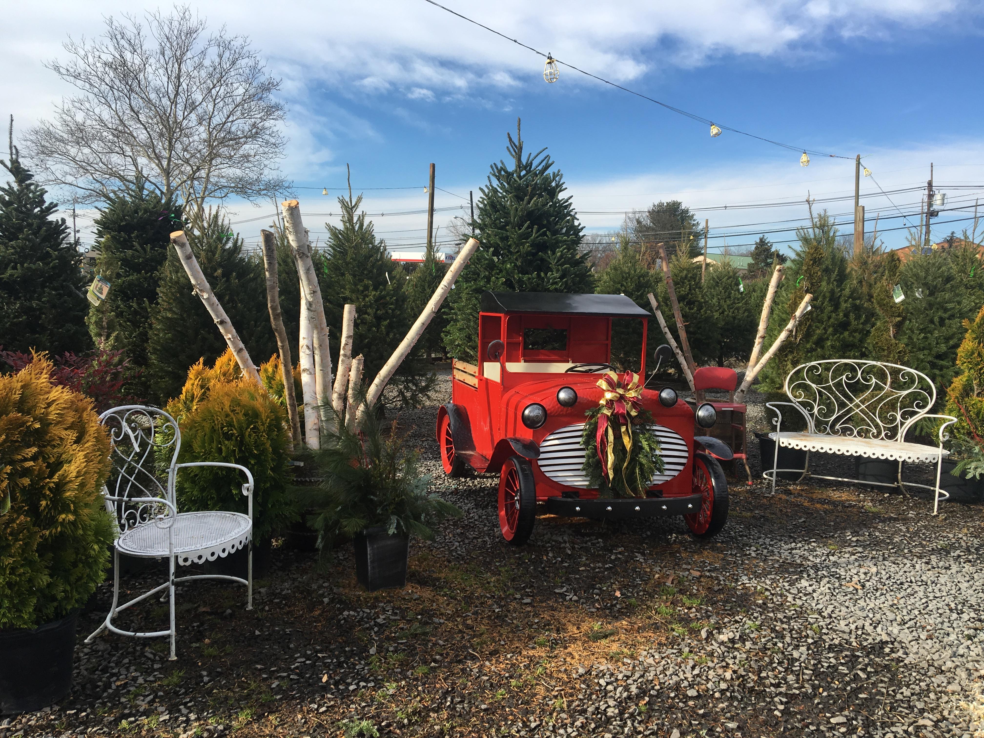santa sleigh christmas display