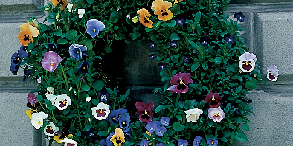 A Fragrant and Fresh Way to Decorate…Make a Living Wreath with Pansies!