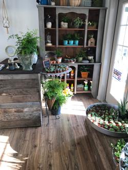 chester store entrance- inside