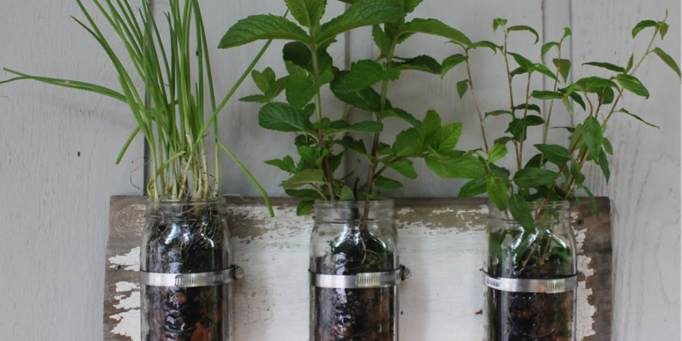 Make a Manly Herb Garden for your Special Guy!
