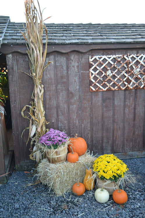 Fall Decorations Add-on to Decorating or Container Package
