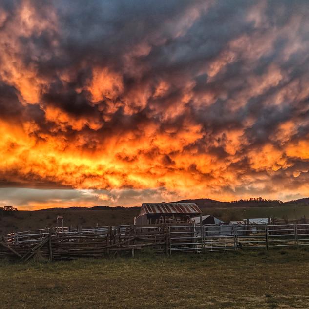 Sunset over Sheepyards
