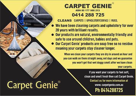 Carpet genie.jpg