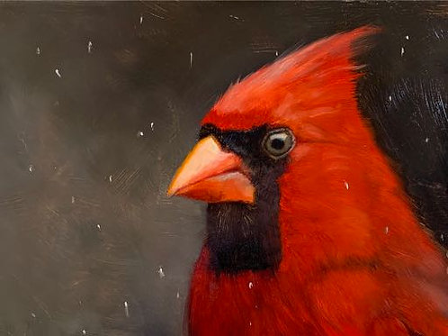 Learn to Paint Birds