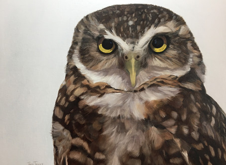 Painting Realistic Birds