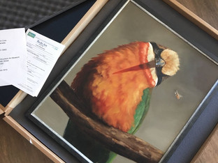 Yippee... this bee-eater is heading to the Woodson Art Museum!