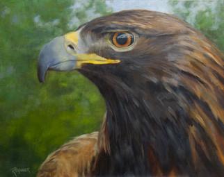 Spirit the Blind Eagle