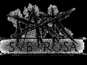 Dark Sub Rosa - Website Build