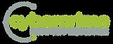CSN logo_HIGH RES.png
