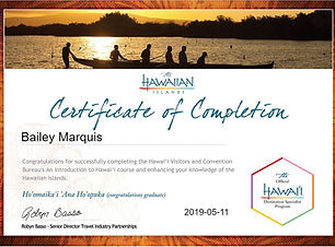 Hawaii Destination Specialist Certificate.JPG