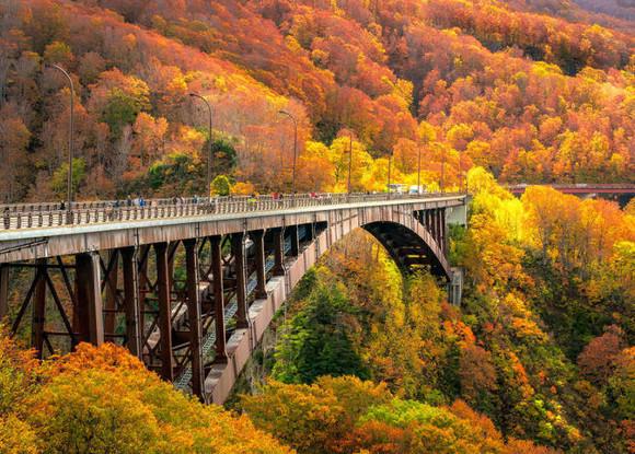 Aomori in Autumn