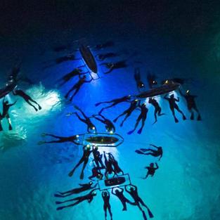 Snorkel with Manta Rays at Night in Kona, HI