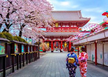 Kimono Wearing in Asakusa