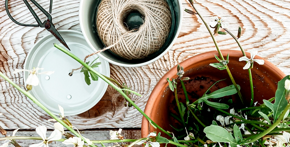 Twine with Cutter