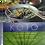 Thumbnail: KOTO Cook Book
