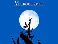 Microcosmos.jpeg