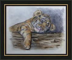 tired-tiger-cub-kelly-mills gold trim.jp